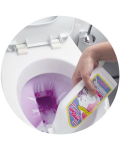 5 Produkte-Set für die WC-Reinigung